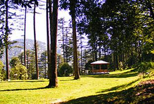 Dhanaulti3.jpg