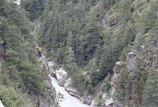 Gangotri5.jpg