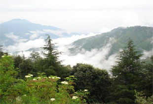 Himachal6.jpg