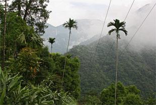 Jaintia-Hills3.jpg